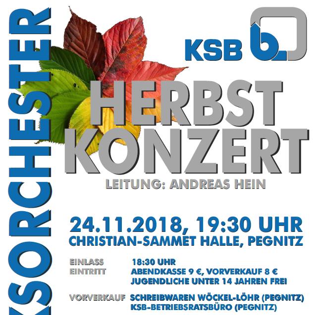 Ankündigung: Jahreskonzert 2018 – 24.11. – Pegnitz
